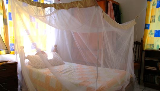 Mosquito net for bed is a recommended protection.