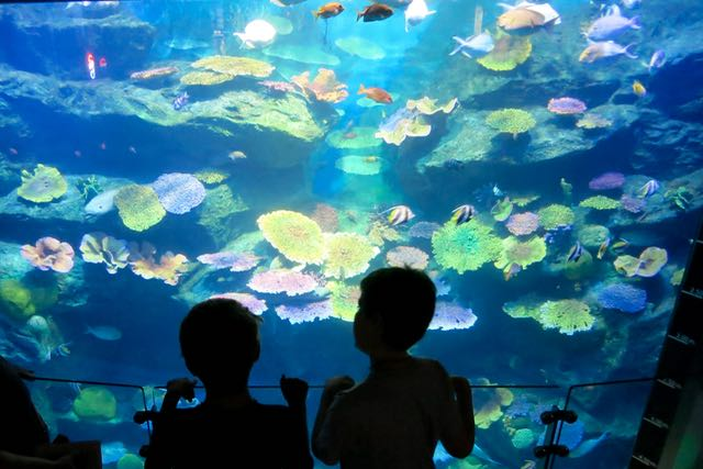 Children at Siam Paragon Aquarium.