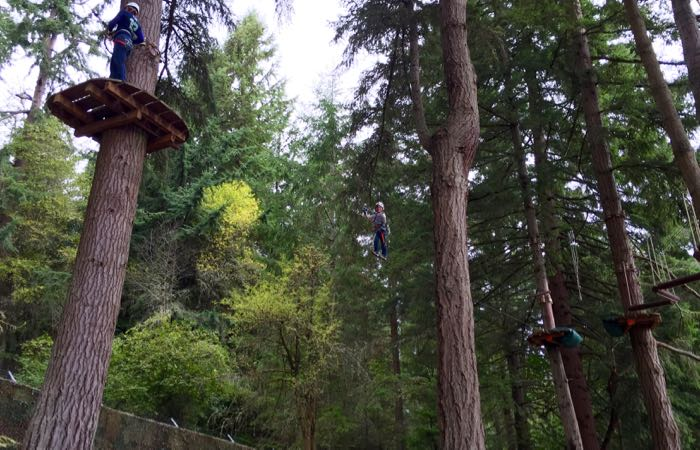 Ziplining in Seattle with kids