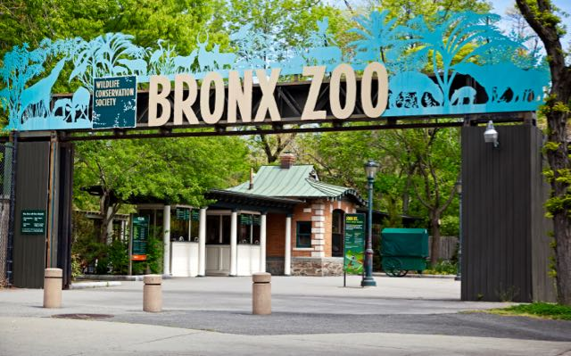 Bronx Zoo for Families
