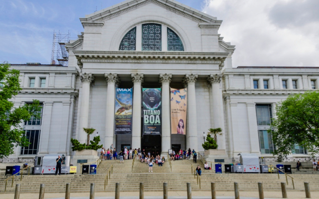 Visiting the Smithsonian Museum of Natural History with Kids