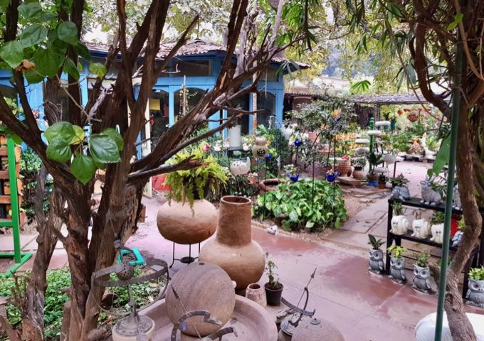 The guesthouse nursery has several plants, flowers, and statues for sale.