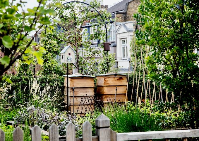 The roof garden has vegetables, herbs, and bees.