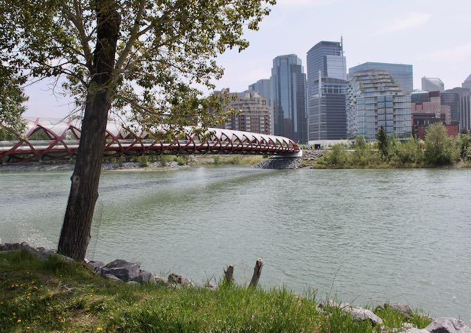 The Peace Bridge is an iconic pedestrian bridge.