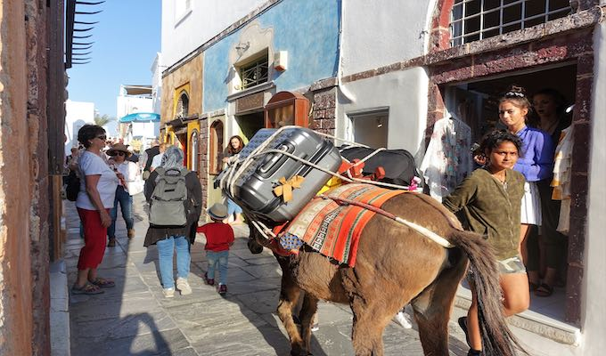 A donkey carries luggage in Oia.