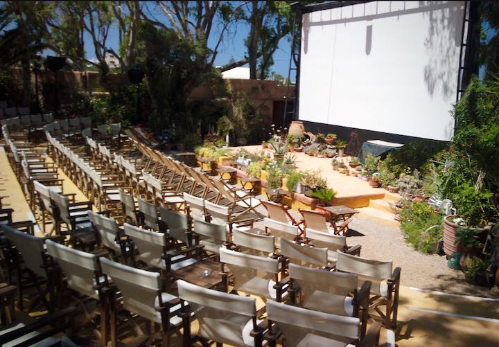 Chairs lined up before an outdoor movie screen, surrounded by desert plants