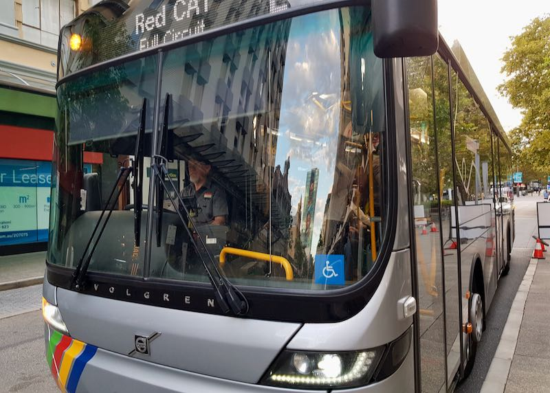There is a free CAT bus service in the city center.