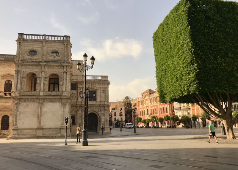 Plaza Nueva features landscaped topiary.