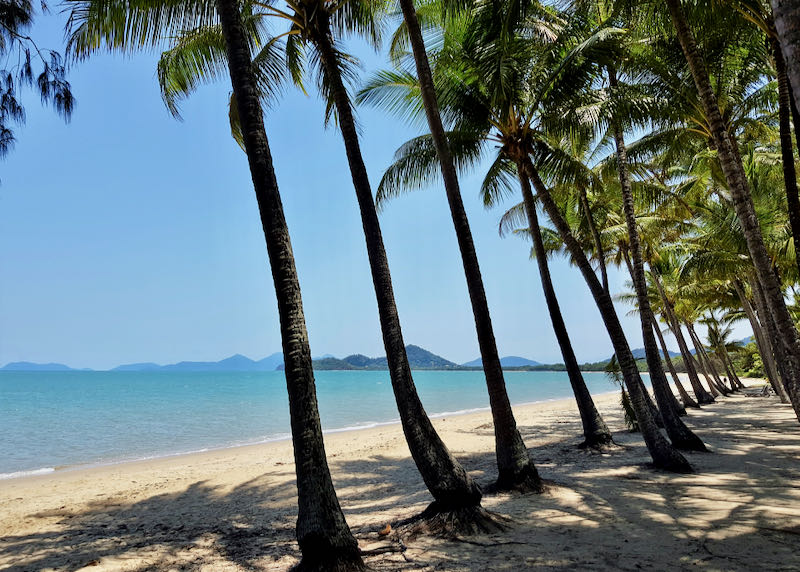 Palm Cove is about an hour away.